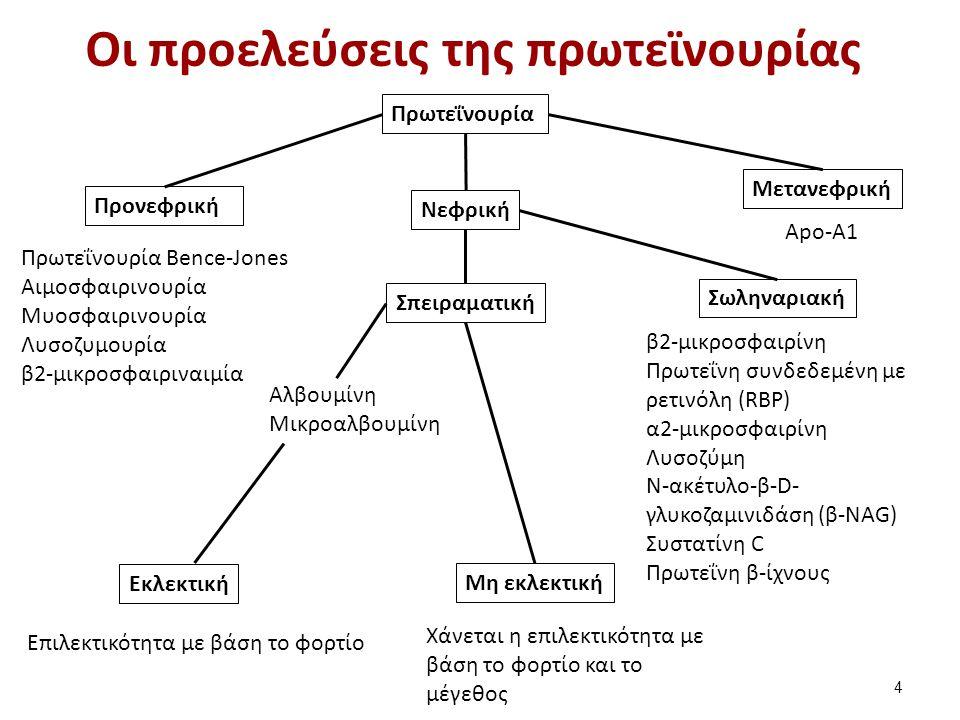 Οι προελεύσεις της πρωτεϊνουρίας Πρωτεΐνουρία Προνεφρική Νεφρική Μετανεφρική Σπειραματική Σωληναριακή Εκλεκτική Μη εκλεκτική Πρωτεΐνουρία Bence-Jones Αιμοσφαιρινουρία Μυοσφαιρινουρία Λυσοζυμουρία β2-μικροσφαιριναιμία Αλβουμίνη Μικροαλβουμίνη Επιλεκτικότητα με βάση το φορτίο Apo-A1 β2-μικροσφαιρίνη Πρωτεΐνη συνδεδεμένη με ρετινόλη (RBP) α2-μικροσφαιρίνη Λυσοζύμη Ν-ακέτυλο-β-D- γλυκοζαμινιδάση (β-NAG) Συστατίνη C Πρωτεΐνη β-ίχνους Χάνεται η επιλεκτικότητα με βάση το φορτίο και το μέγεθος 4