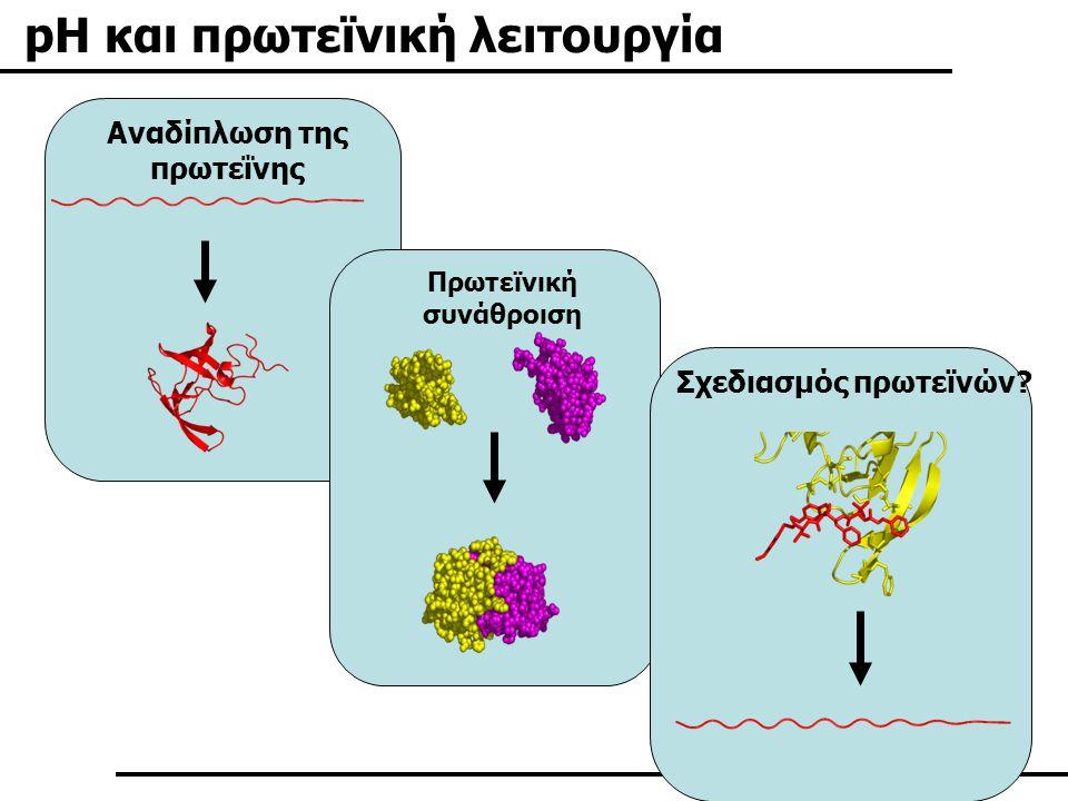 Influenza Hemagglutinin protein Αλλαγή στην διαμόρφωση Καταλυτική δραστικότητα Συγγένεια πρόσδεσης Σταθερότητα Κόκκινο: περιοχή της αιμοσυγκολλητίνης