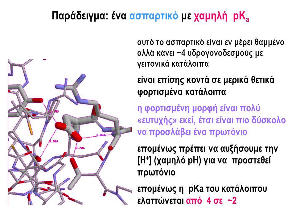Παράδειγμα: ένα γλουταμικό με υψηλή pK a αυτό το γλουταμικό είναι εν μέρει θαμμένο και κάνει μη ευνοϊκές αλληλεπιδράσεις με άλλα κατάλοιπα αυτό είναι