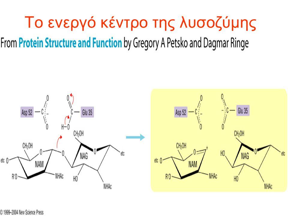 Το ενεργό κέντρο των ενζύμων μπορεί να τροποποιεί τις pka -C-H γαλακτικού pka >20 με τροποποίηση pka -COOH από pka~3.9 pka~7 σε μη πολικό περιβάλλον -