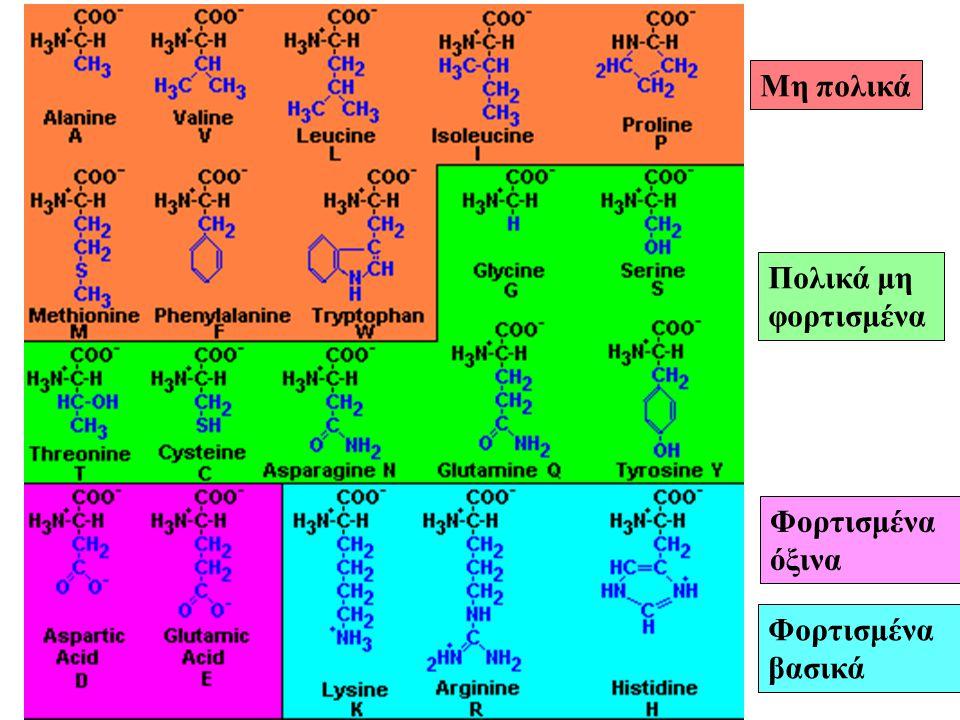 Tα αμινοξέα ταξινομούνται ανάλογα με την φύση της πλευρικής ομάδας R