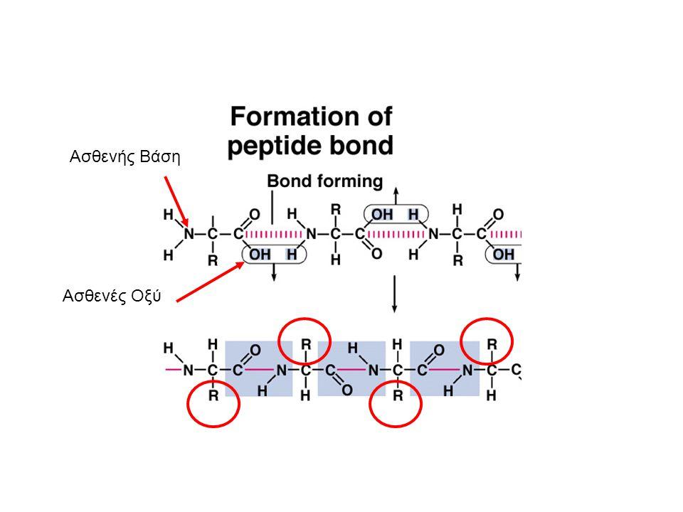 Πρωτεîνες, Αμινοξέα, και pH