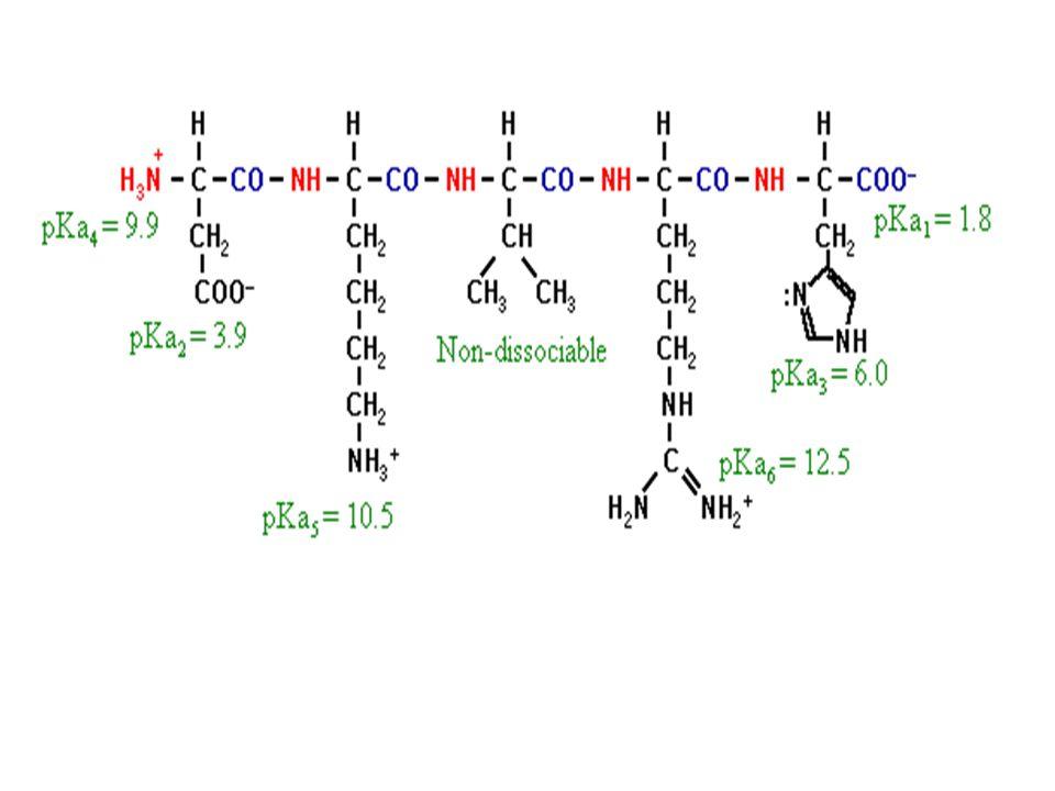 25. Ποιο είναι το pI ενός πενταπεπτιδίου που αποτελείται από κατάλοιπα ασπαρτικού, λυσίνης, βαλίνης, αργινίνης και ιστιδίνης? Aπάντηση: 10.2