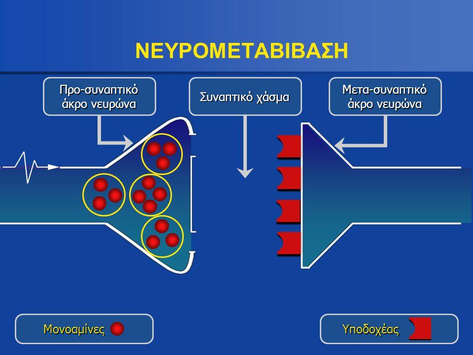 Προ-συναπτικό άκρο νευρώνα Συναπτικό χάσμα Μετα-συναπτικό άκρο νευρώνα ΝΕΥΡΟΜΕΤΑΒΙΒΑΣΗ Moνοαμίνες Υποδοχέας