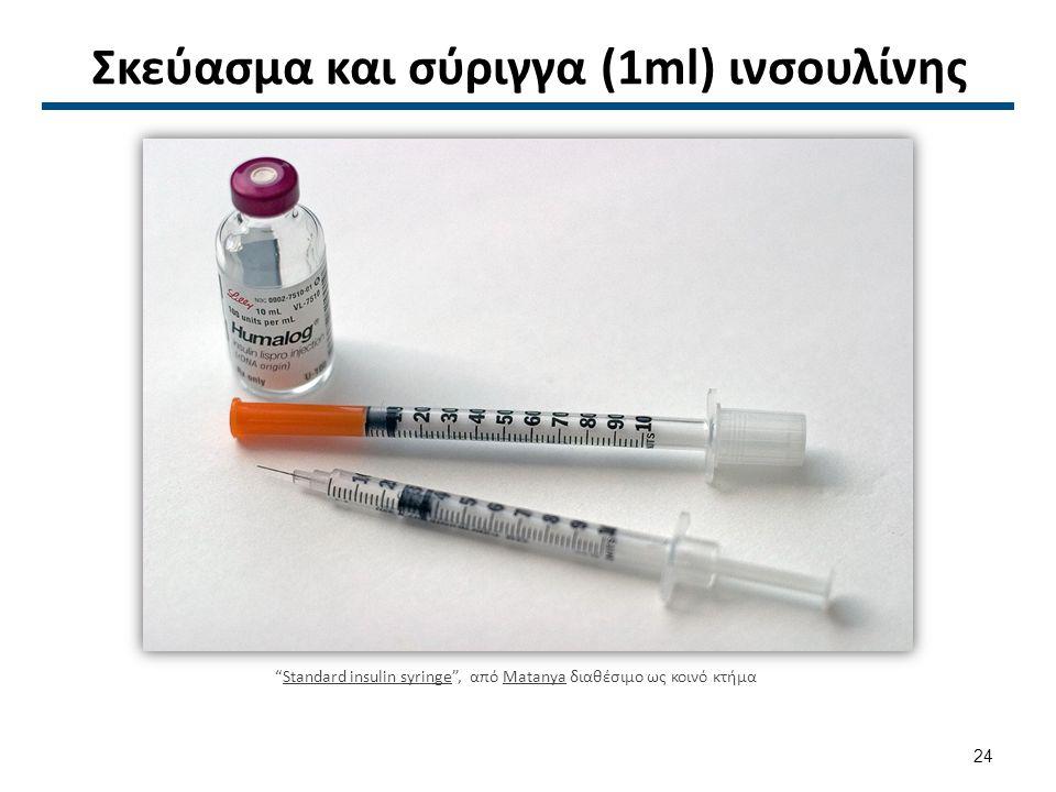 Σκεύασμα και σύριγγα (1ml) ινσουλίνης Standard insulin syringe , από Matanya διαθέσιμο ως κοινό κτήμαStandard insulin syringeMatanya 24