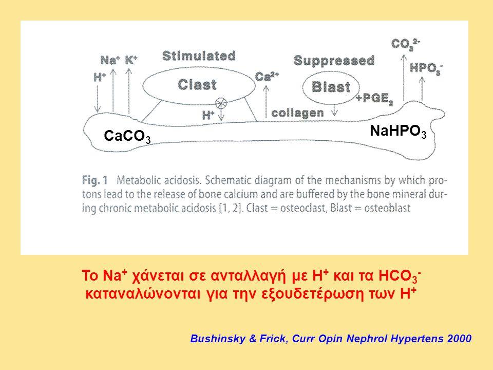 Το Na + χάνεται σε ανταλλαγή με Η + και τα HCO 3 - καταναλώνονται για την εξουδετέρωση των Η + Bushinsky & Frick, Curr Opin Nephrol Hypertens 2000 CaC