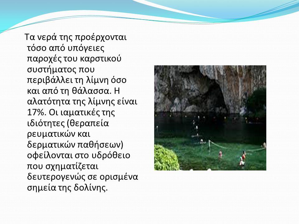 Τα νερά της προέρχονται τόσο από υπόγειες παροχές του καρστικού συστήματος που περιβάλλει τη λίμνη όσο και από τη θάλασσα. Η αλατότητα της λίμνης είνα