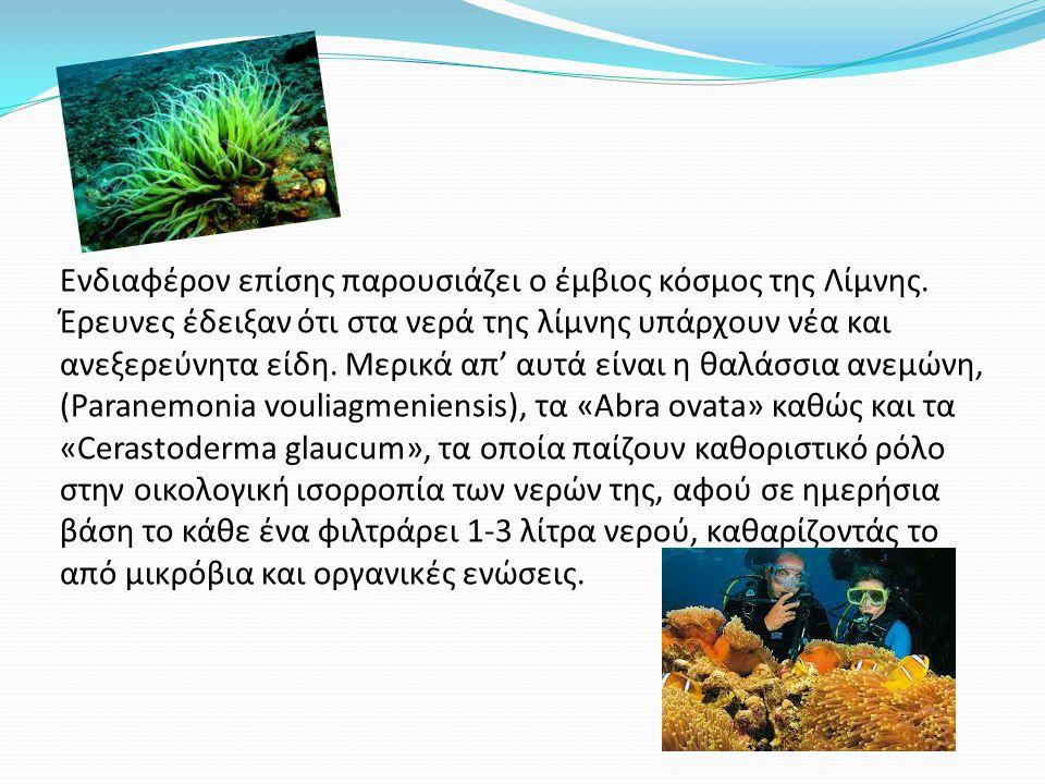 Ενδιαφέρον επίσης παρουσιάζει ο έμβιος κόσμος της Λίμνης.