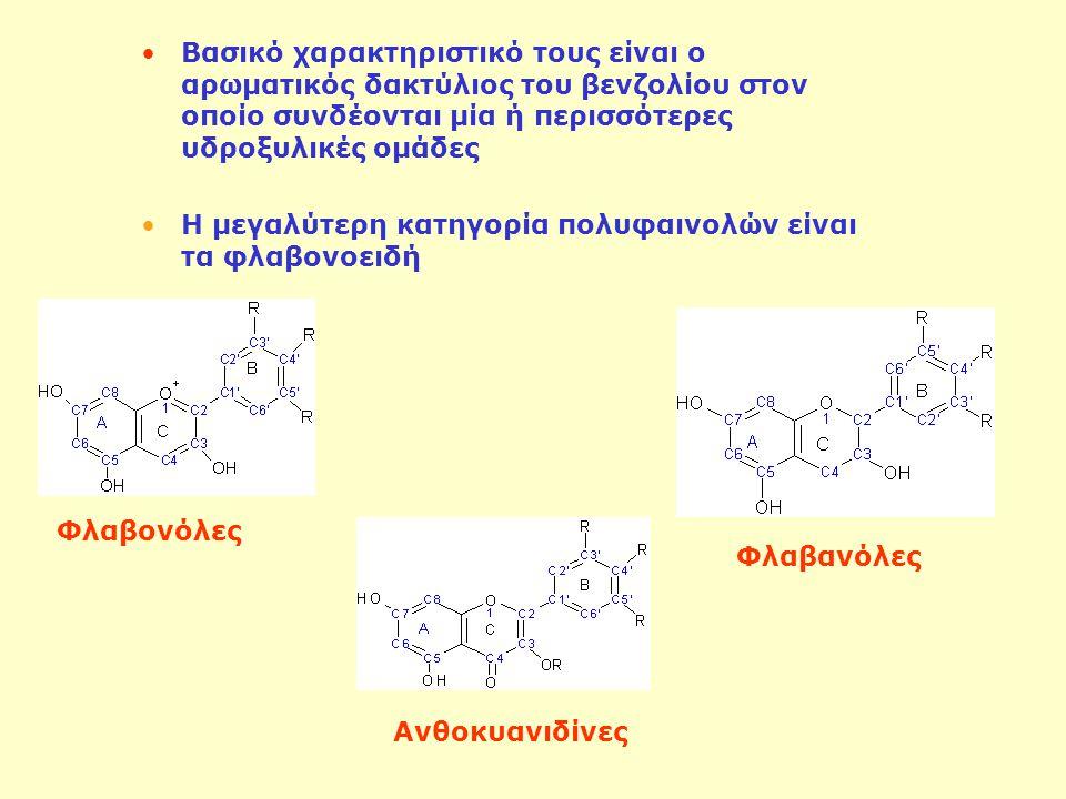Βασικό χαρακτηριστικό τους είναι ο αρωματικός δακτύλιος του βενζολίου στον οποίο συνδέονται μία ή περισσότερες υδροξυλικές ομάδες Η μεγαλύτερη κατηγορία πολυφαινολών είναι τα φλαβονοειδή Φλαβονόλες Φλαβανόλες Ανθοκυανιδίνες