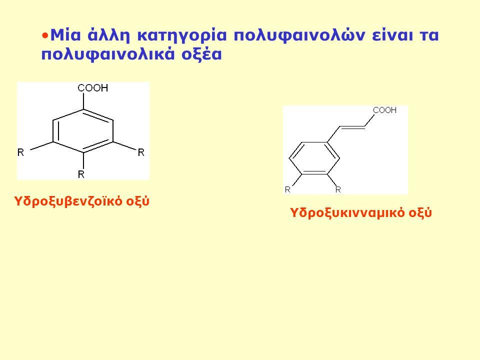 Μία άλλη κατηγορία πολυφαινολών είναι τα πολυφαινολικά οξέα Υδροξυβενζοϊκό οξύ Υδροξυκινναμικό οξύ