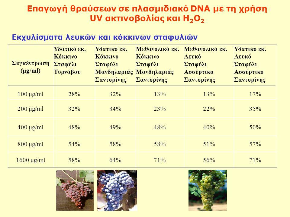 Επαγωγή θραύσεων σε πλασμιδιακό DNA με τη χρήση UV ακτινοβολίας και Η 2 Ο 2 Συγκέντρωση (μg/ml) Υδατικό εκ.
