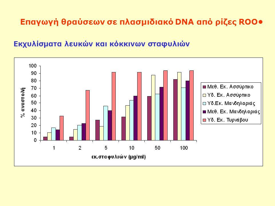 Επαγωγή θραύσεων σε πλασμιδιακό DNA από ρίζες ROO