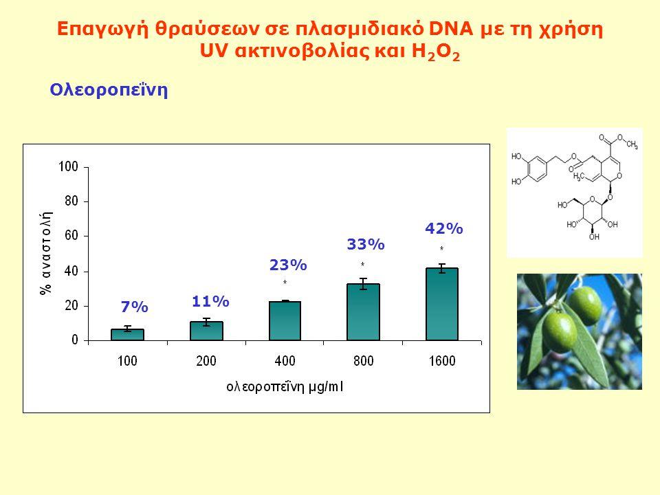 Επαγωγή θραύσεων σε πλασμιδιακό DNA με τη χρήση UV ακτινοβολίας και Η 2 Ο 2 Ολεοροπεΐνη 7% 11% 23% 33% 42%