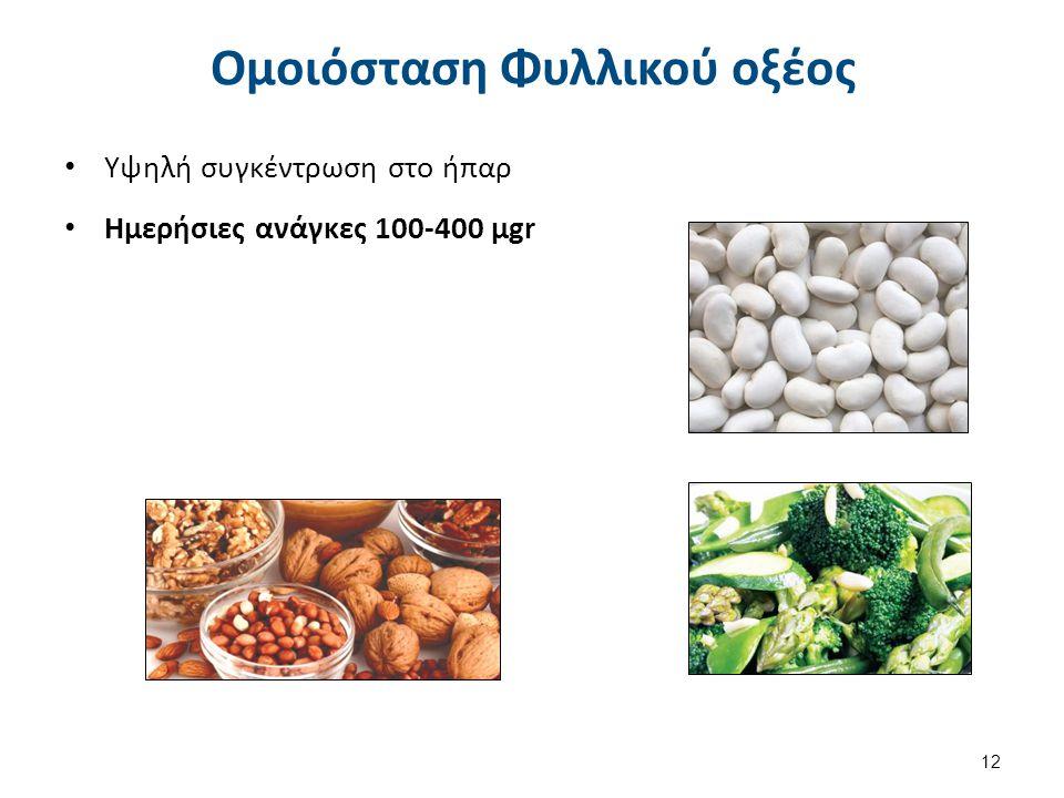 Απορρόφηση Φυλλικού οξέος Πολυγλουταμινικό οξύ (φυλλικό τροφών).