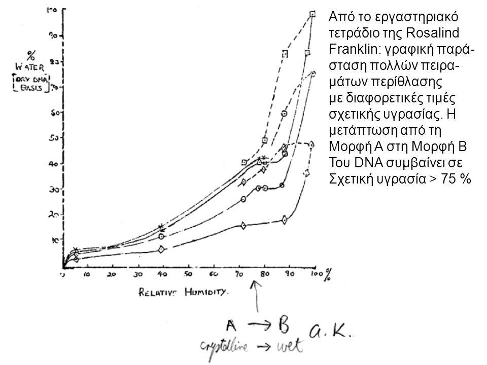 Περιθλασιγράμματα DNA στις μορφές Α και Β, όπως τα παρατήρησε η Franklin με τον βοηθό της Goslin (1953).