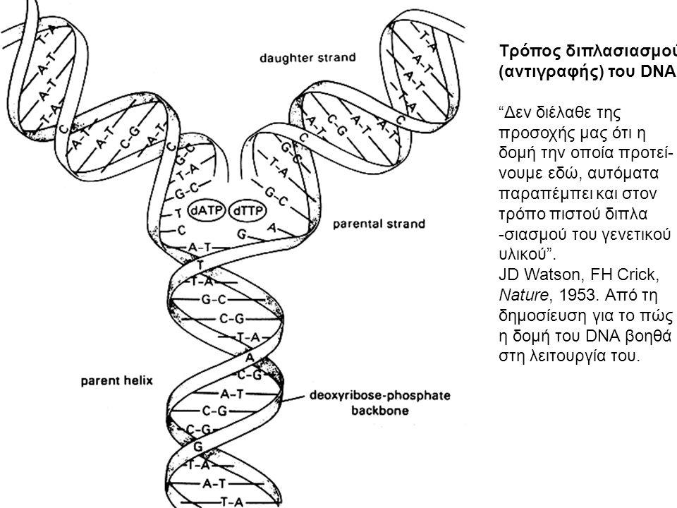 ΑΝΤΙΓΡΑΦΗ ΤΟΥ DNA (συνεχής και ασυνεχής)