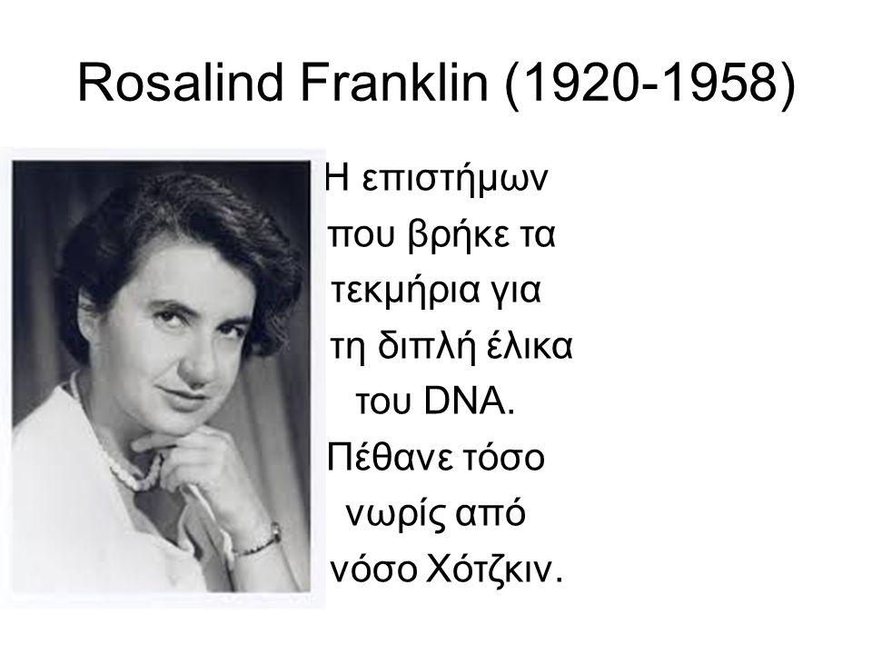 Rosalind Franklin (1920-1958) H επιστήμων που βρήκε τα τεκμήρια για τη διπλή έλικα του DNA.