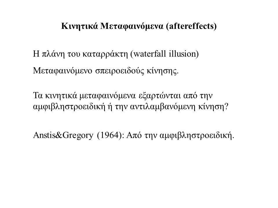 Κινητικά Μεταφαινόμενα (aftereffects) H πλάνη του καταρράκτη (waterfall illusion) Μεταφαινόμενο σπειροειδούς κίνησης. Τα κινητικά μεταφαινόμενα εξαρτώ