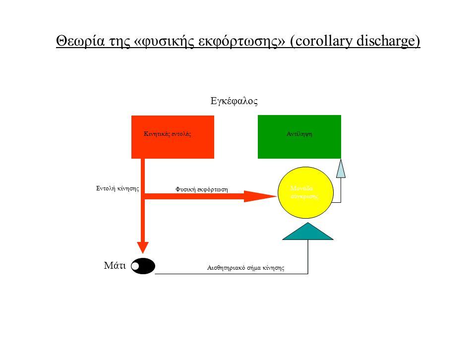 Θεωρία της «φυσικής εκφόρτωσης» (corollary discharge) Κινητικές εντολέςΑντίληψη Εντολή κίνησης Αισθητηριακό σήμα κίνησης Μονάδα σύγκρισης Φυσική εκφόρ