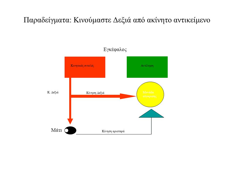 Παραδείγματα: Κινούμαστε Δεξιά από ακίνητο αντικείμενο Κινητικές εντολέςΑντίληψη Κ. Δεξιά Κίνηση αριστερά Μονάδα σύγκρισης Κίνηση Δεξιά Εγκέφαλος Μάτι