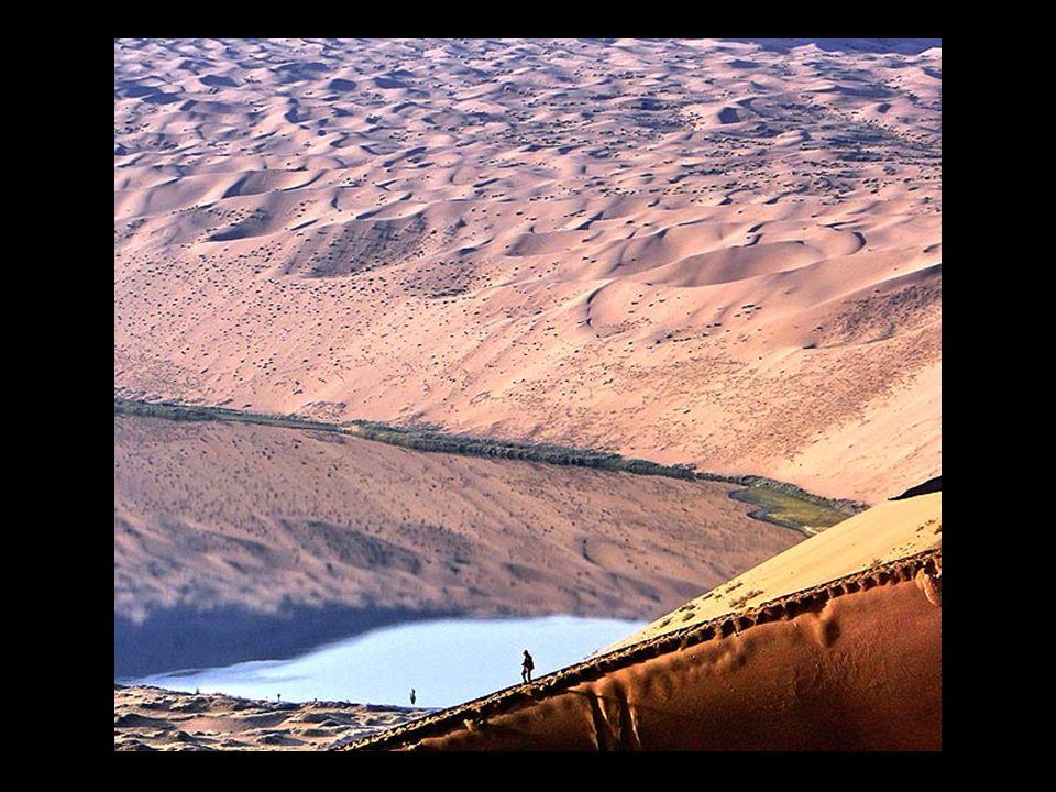 Μερικές λίμνες που έχουν δημιουργηθεί πρόσφατα, αλλά και οι παλαιότερες έχουν υψηλή περιεκτικότητα σε αλάτι.