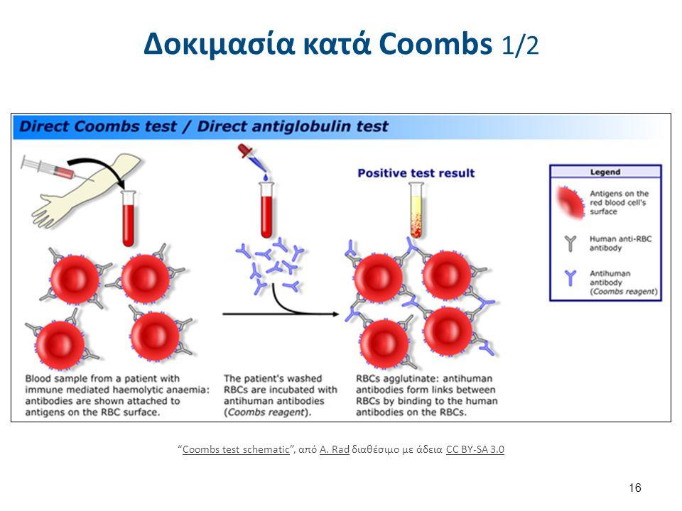"""Δοκιμασία κατά Coοmbs 1/2 """"Coombs test schematic"""", από A. Rad διαθέσιμο με άδεια CC BY-SA 3.0Coombs test schematicA. RadCC BY-SA 3.0 16"""