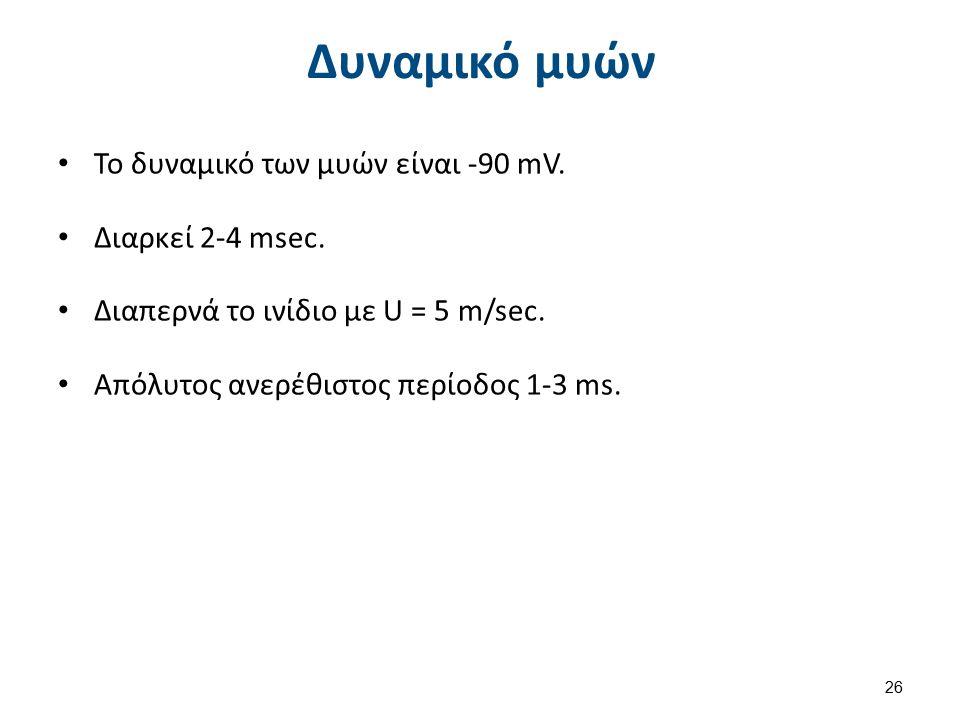 Το δυναμικό των μυών είναι -90 mV. Διαρκεί 2-4 msec. Διαπερνά το ινίδιο με U = 5 m/sec. Απόλυτος ανερέθιστος περίοδος 1-3 ms. Δυναμικό μυών 26