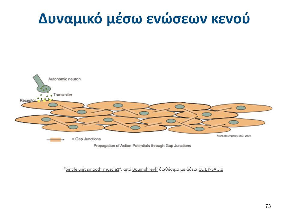 """Δυναμικό μέσω ενώσεων κενού """"Single unit smooth muscle1"""", από Boumphreyfr διαθέσιμο με άδεια CC BY-SA 3.0Single unit smooth muscle1BoumphreyfrCC BY-SA"""