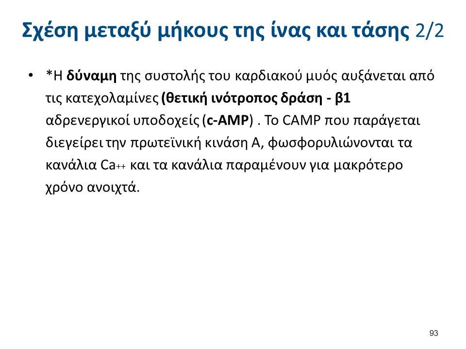 *Η δύναμη της συστολής του καρδιακού μυός αυξάνεται από τις κατεχολαμίνες (θετική ινότροπος δράση - β1 αδρενεργικοί υποδοχείς (c-AMP). Το CAMP που παρ