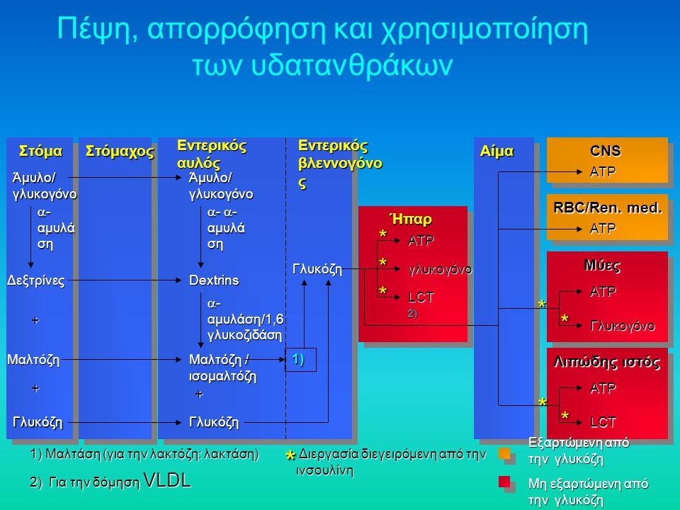 Πέψη, απορρόφηση και χρησιμοποίηση των υδατανθράκων 1) Μαλτάση (για την λακτόζη: λακτάση) 2) Για την δόμηση VLDL * Διεργασία διεγειρόμενη από την ινσο
