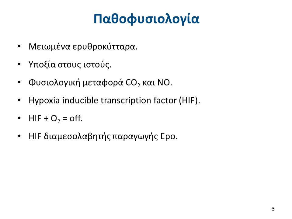 Παθοφυσιολογία Μειωμένα ερυθροκύτταρα. Υποξία στους ιστούς. Φυσιολογική μεταφορά CO 2 και NO. Hypoxia inducible transcription factor (HIF). HIF + O 2