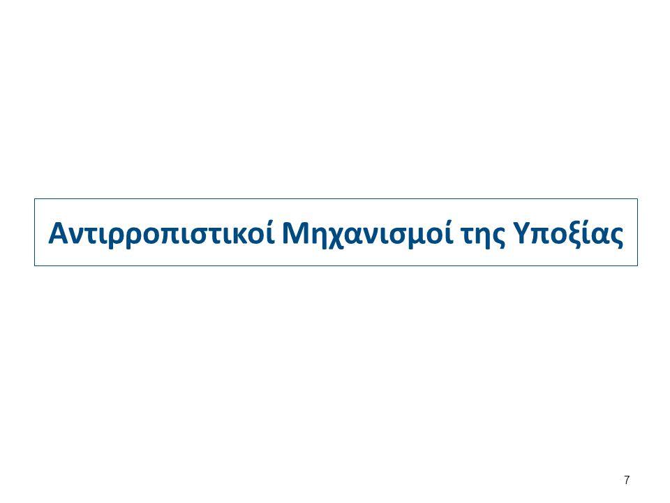 Υποκυτταρικόςπληθυσμός Απλασία Διήθηση από παθολογικό ιστό Ορθροβλαστες(πυρήνες) Δυσερυθροποιητικήαναιμία Συγκαλυμμένημεγαλοβλαστκήαναιμία Μυελοφθισική αναιμία Μεγαλοβλαστικές αλλοιώσεις αλλοιώσεις ΜυελοδυσπλαστικάσύνδρομαΜυελική Αμιγής απλασία ερυθράς σειράς Αιματολογικά νοσήματαΑιματολογικά νοσήματα ΜεταστάσειςΜεταστάσεις Κοκκιώματα (φυματίωση)Κοκκιώματα (φυματίωση) Οστεομυελική βιοψία 28