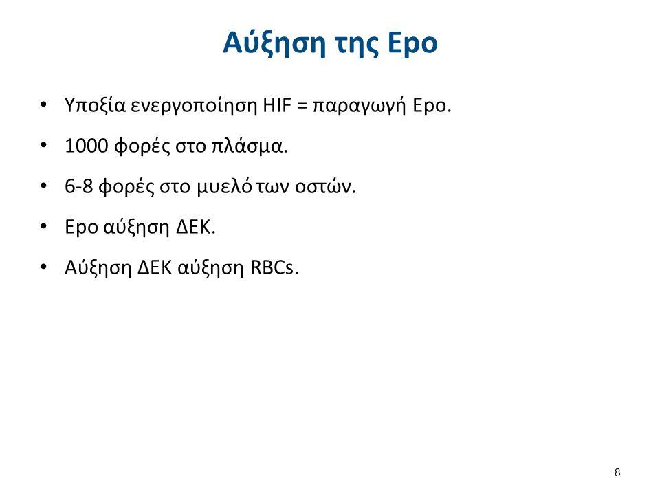 Αύξηση της Epo Υποξία ενεργοποίηση HIF = παραγωγή Εpo. 1000 φορές στο πλάσμα. 6-8 φορές στο μυελό των οστών. Epo αύξηση ΔΕΚ. Αύξηση ΔΕΚ αύξηση RBCs. 8