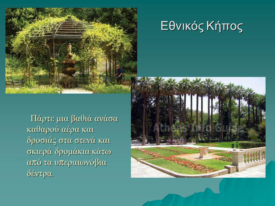 Εθνικός Κήπος Πάρτε μια βαθιά ανάσα καθαρού αέρα και δροσιάς στα στενά και σκιερά δρομάκια κάτω α π ό τα υ π εραιωνόβια δέντρα. Πάρτε μια βαθιά ανάσα