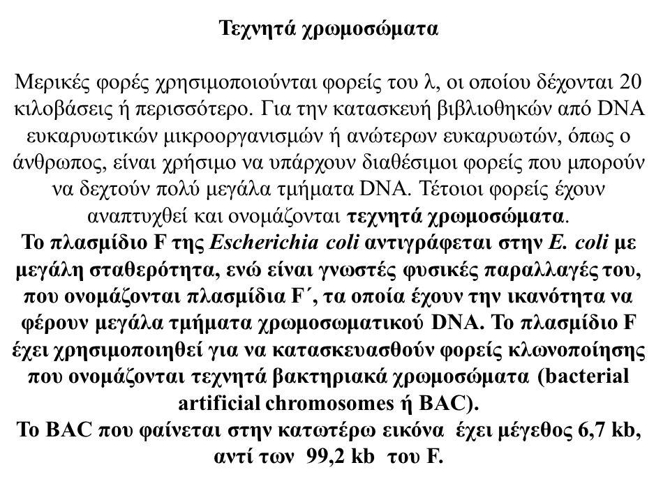 Τεχνητά χρωμοσώματα Μερικές φορές χρησιμοποιούνται φορείς του λ, οι οποίου δέχονται 20 κιλοβάσεις ή περισσότερο. Για την κατασκευή βιβλιοθηκών από DNA
