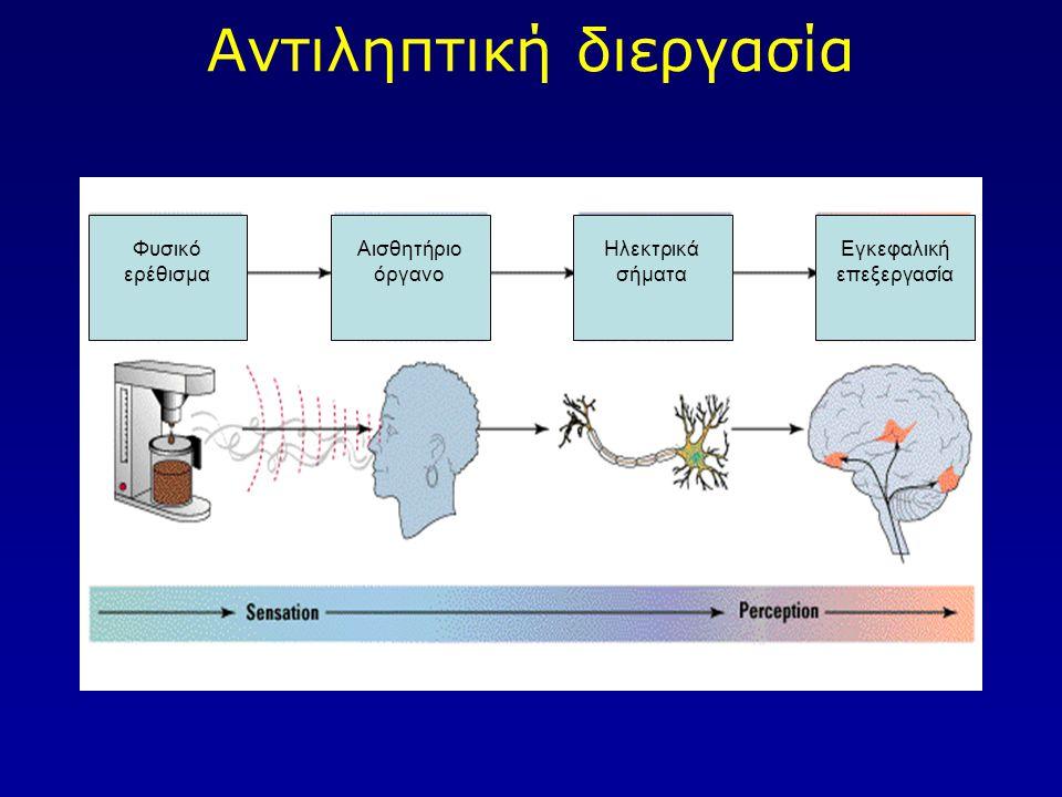 Φύση αντιληπτικών δεδομένων Υπάρχουν τρεις ξεχωριστές κατηγορίες αντιληπτικών δεδομένων: 1.Το φυσικό/εξωτερικό ερέθισμα (distal stimulus) 2.