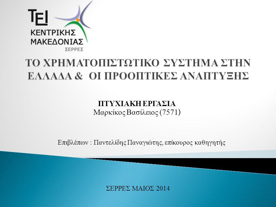 Η εργασία αυτή επικεντρώνεται στον εντοπισμό και τη σκιαγράφηση της σημασίας του χρηματοπιστωτικού συστήματος για την οικονομική δραστηριότητα.