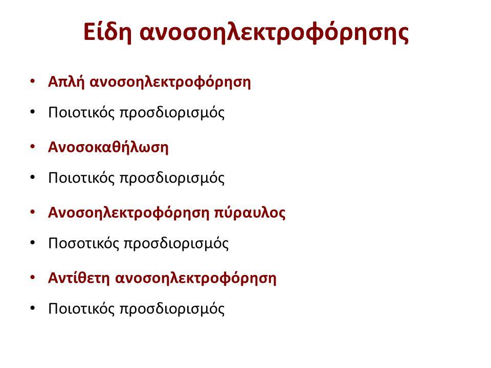 Αλυσίδες