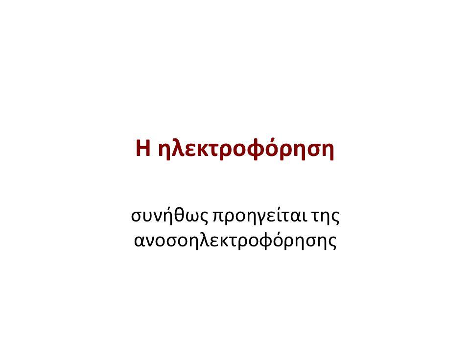 Yπάρχουν αλυσίδες γ, α και λ Αποτελέσματα ανοσοηλεκτροφόρησης (2 από 3)