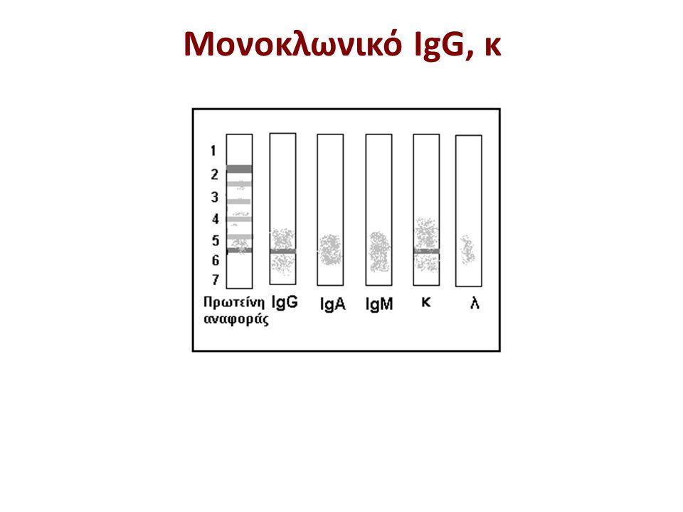 Μονοκλωνικό IgG, κ