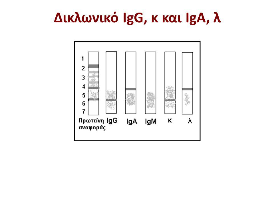 Δικλωνικό IgG, κ και IgA, λ