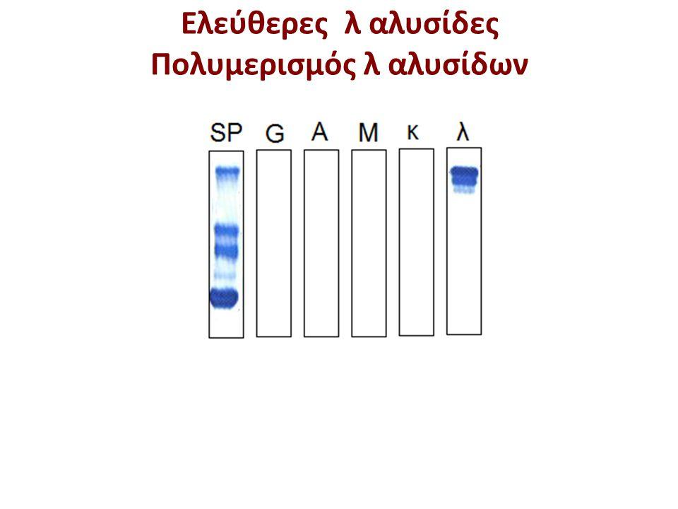 Ελεύθερες λ αλυσίδες Πολυμερισμός λ αλυσίδων