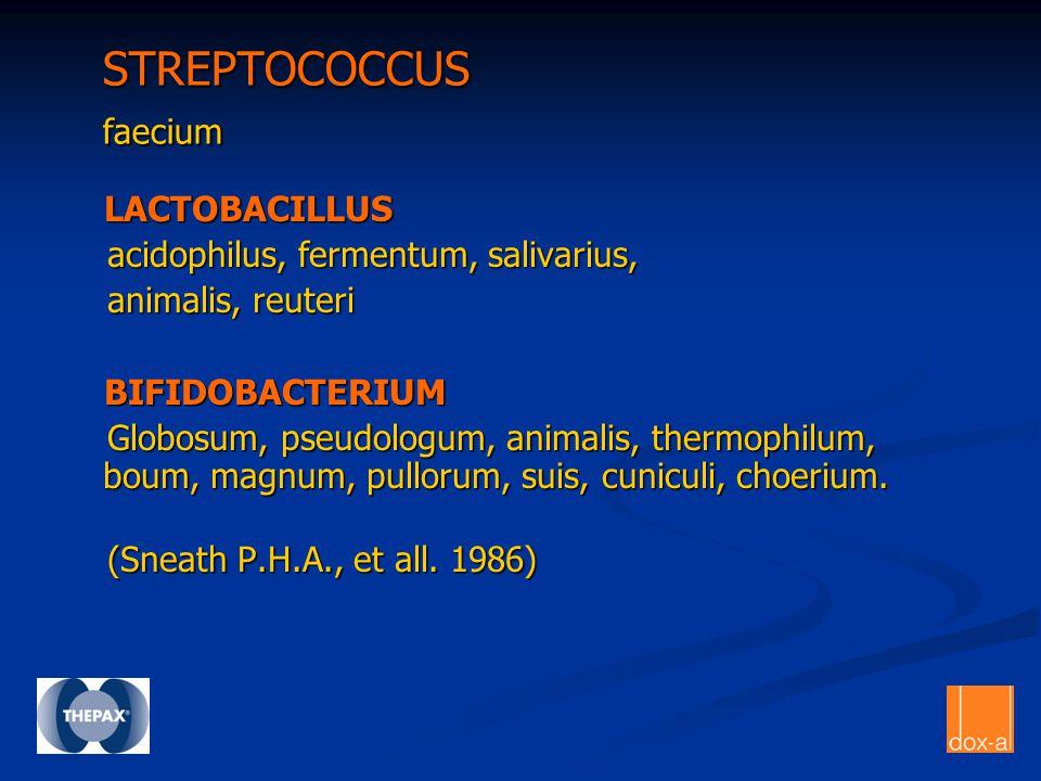 STREPTOCOCCUS faecium STREPTOCOCCUS faecium LACTOBACILLUS LACTOBACILLUS acidophilus, fermentum, salivarius, acidophilus, fermentum, salivarius, animal