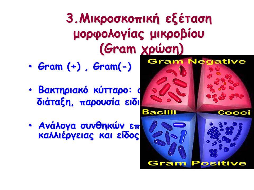 Χαρακτηριστική οσμή  P.aeruginosa: «γιασεμί»  Proteus mirabilis:«καμένη σοκολάτα»  Streptococcus milleri group:«καραμέλα»  Eikenella corrodens:«χλωρίνη»
