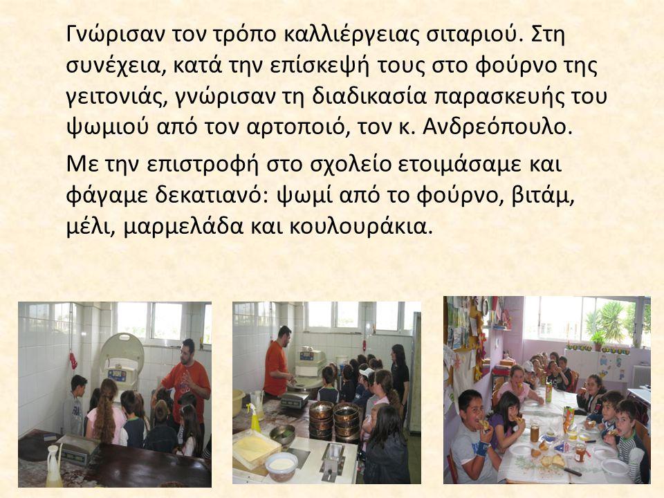 Οι μαθητές γνώρισαν ευχάριστα και δημιουργικά τον τρόπο σωστής διατροφής.