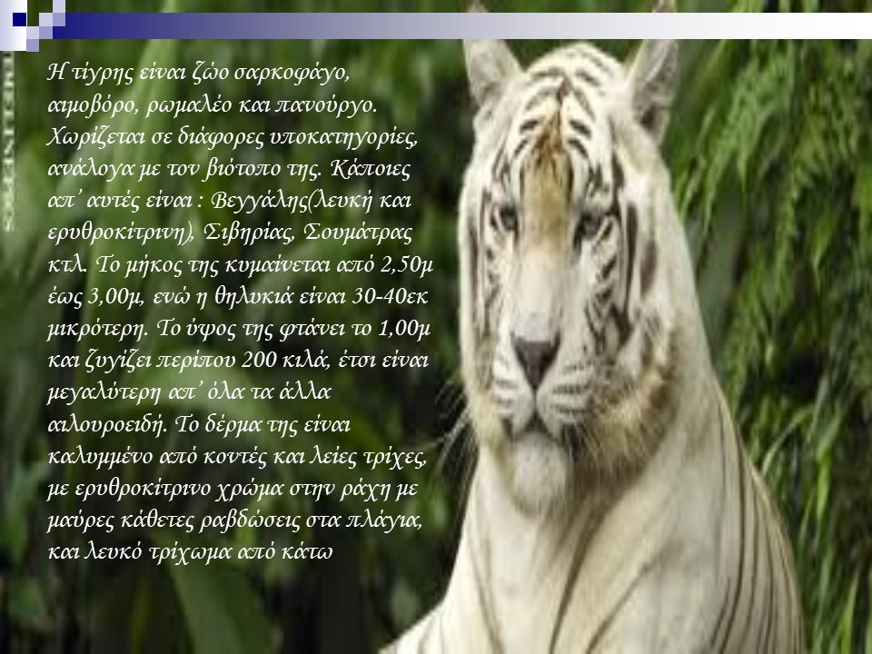 Η τίγρης είναι ζώο σαρκοφάγο, αιμοβόρο, ρωμαλέο και πανούργο. Χωρίζεται σε διάφορες υποκατηγορίες, ανάλογα με τον βιότοπο της. Κάποιες απ' αυτές είναι