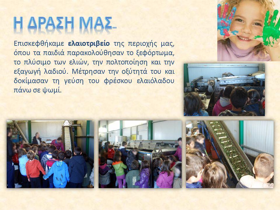 Επισκεφθήκαμε ελαιοτριβείο της περιοχής μας, όπου τα παιδιά παρακολούθησαν το ξεφόρτωμα, το πλύσιμο των ελιών, την πολτοποίηση και την εξαγωγή λαδιού.