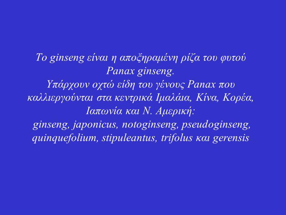 Το ginseng είναι η αποξηραμένη ρίζα του φυτού Panax ginseng.