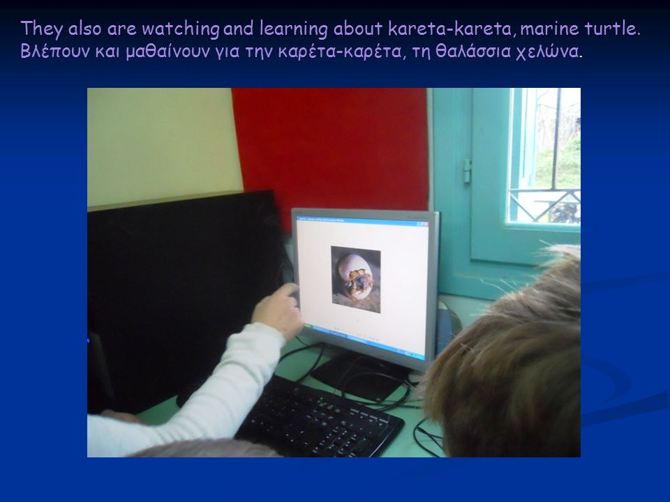 They also are watching and learning about kareta-kareta, marine turtle. Βλέπουν και μαθαίνουν για την καρέτα-καρέτα, τη θαλάσσια χελώνα.