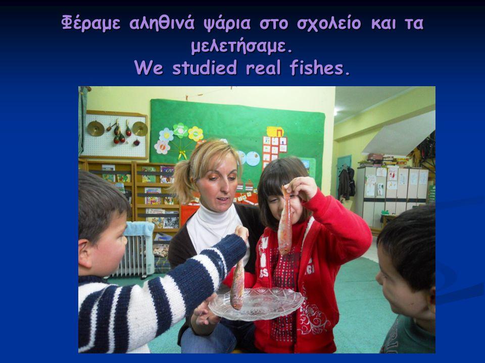Φέραμε αληθινά ψάρια στο σχολείο και τα μελετήσαμε. We studied real fishes.